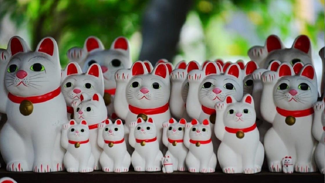 Los gatos en Japón